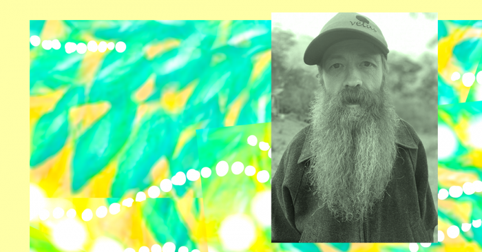 A pastel yellow border on the left of an abstract pattern. Aqua and dark yellow leaves are splashed across a golden background. There are fluid lines of white dots flowing across the pattern in different directions. A photo of Nick Whittock is superimposed on the righthand side. Nick is looking directly into the camera. He is wearing a cap and has a flowing beard. In the background is the vague outline of a forest.